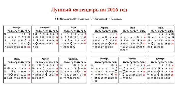 Дни выходных в ноябре 2015г